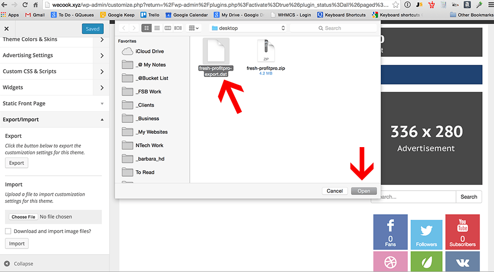 customizer-import-settings-2